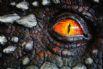 Dragon's Eye - Llygad y Ddraig