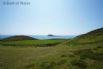 Catch a boat from Porth Meudwy, near Aberdaron to Ynys Enlli (Bardsey Island)