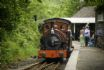 Join the Talyllyn Railway at Abergynolwyn station (2 miles)