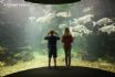 Anglesey Sea Zoo offers a great family day out