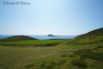 Boat trips are available from Porth Meudwy (near Aberdaron) to Bardsey Island